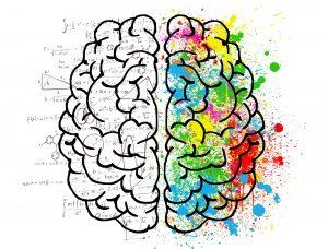 استفاده از دو نیم کره مغز برای حفظ اعداد طولانی