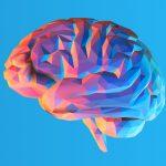 تقویت حافظه کوتاه مدت با 5 روش موثر و کاربردی