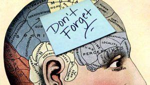 حافظه بلند مدت