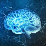 برای تقویت حافظه چه باید کرد ؛ 5 نکته ای که نباید از دست داد