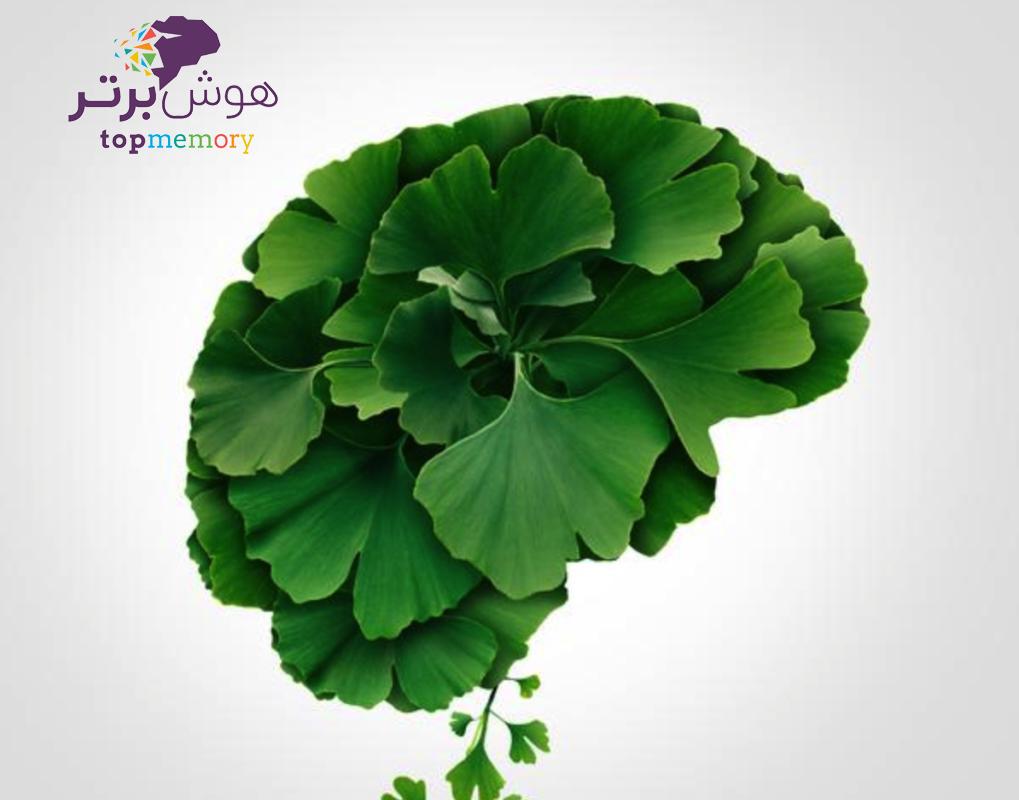 درمان گیاهی حواس پرتی و عدم تمرکز