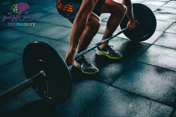 ورزش و یادگیری