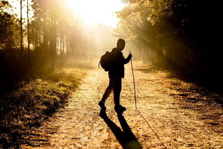 قدم زدن