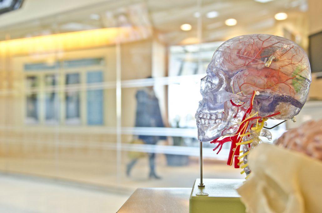 نورون های عصبی