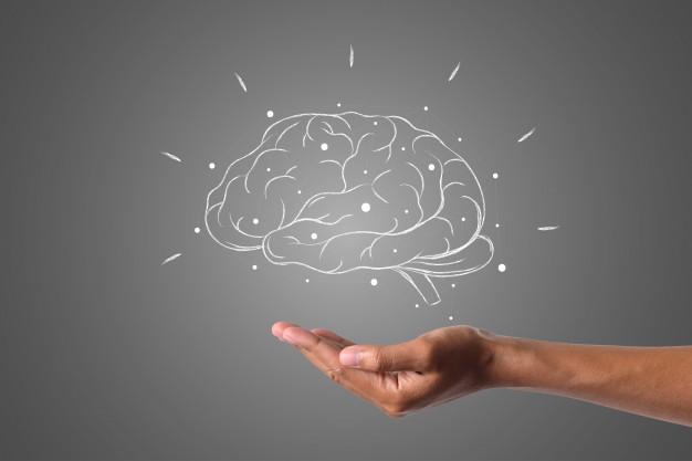 ماده خاکستری مغز