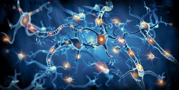 آلزایمر و کاهش حافظه