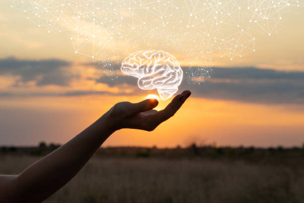 مغز آرام از فواید ذهن آگاهی و مدیتیشن