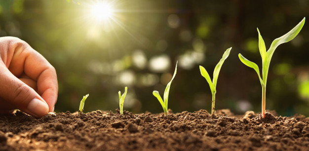 توسعه فردی و رشد