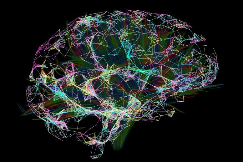 افزایش سرعت مغز