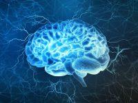 برای تقویت حافظه چه باید کرد